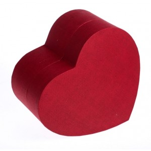 Biodegradable Cremation Ashes Urn (Unity Heart) – RUBY RED