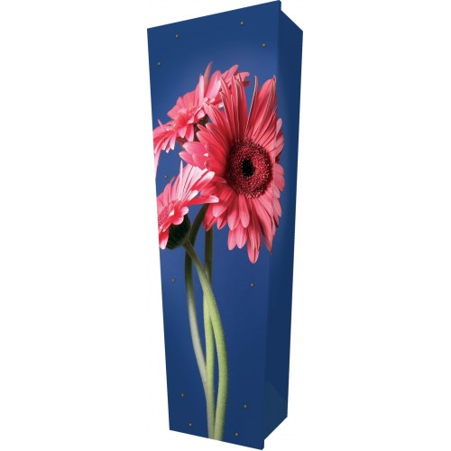Gerbera in Bloom - Personalised Picture Coffin with Customised Design.