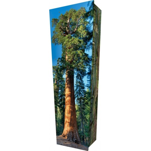 Unique Redwood - Personalised Picture Coffin with Customised Design.