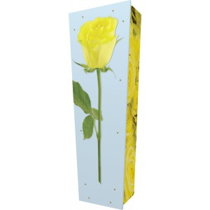 Rose of Friendship - Personalised Picture Coffin with Customised Design.