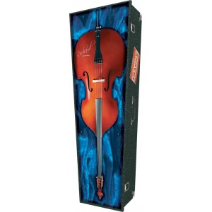 Double Bass - Personalised Picture Coffin with Customised Design.
