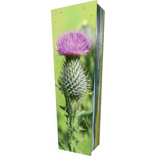 Scottish Thistle - Personalised Picture Coffin with Customised Design.
