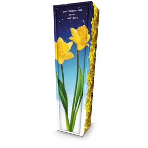 Daffodil. Please call for best prices