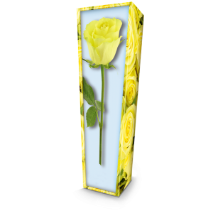 Yellow Rose. Please call for best prices