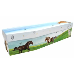 Cat & Horse - Animal & Pet Design Picture Coffin