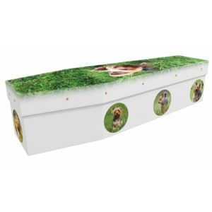 Yorkies World - Animal & Pet Design Picture Coffin