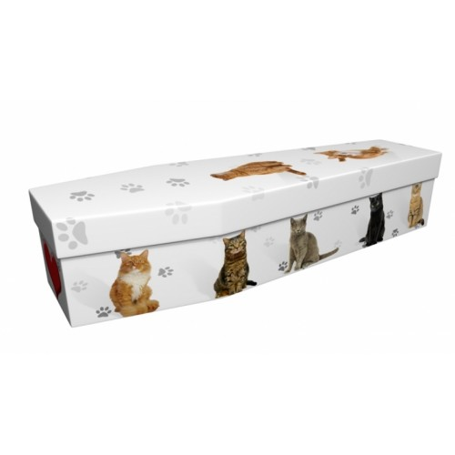Cats & Paw Prints – Animal & Pet Design Picture Coffin