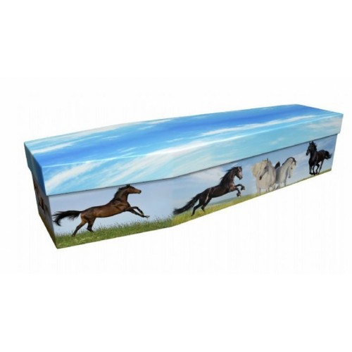 Crazy Horses – Animal & Pet Design Picture Coffin