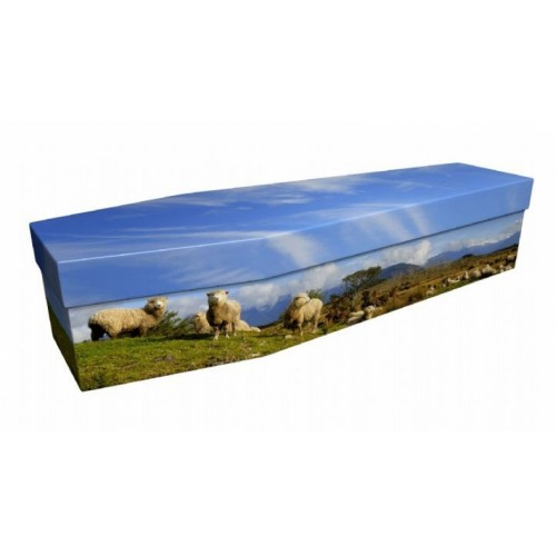 Sheep – Animal & Pet Design Picture Coffin