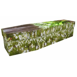 Woodland Snowdrops - Floral Design Picture Coffin