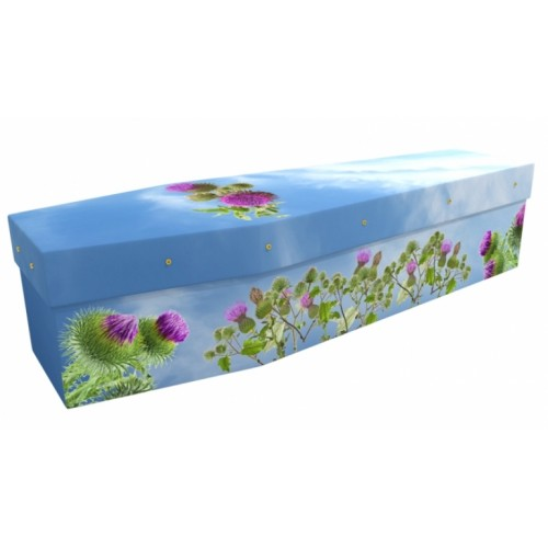 Scottish Thistle - Floral Design Picture Coffin