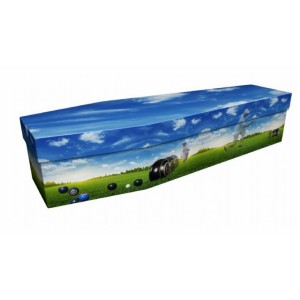 Bowls – Sports & Hobbies Design Picture Coffin