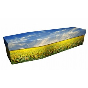 Sunflower Field – Landscape / Scenic Design Picture Coffin