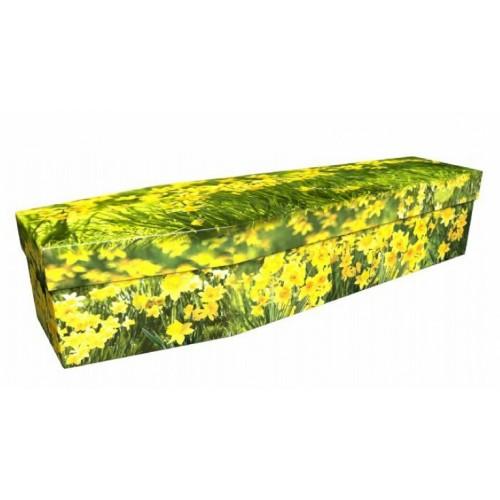 The Field of Daffodils - Premium Cardboard Picture Coffin