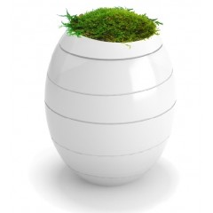 INFINITY Biodegradable Urns ** £29.99 Inc FREE Carry Case **