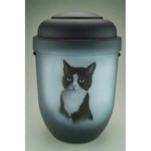 Biodegradable Cremation Ashes Funeral Urn / Casket – CAT (Pet Animal)
