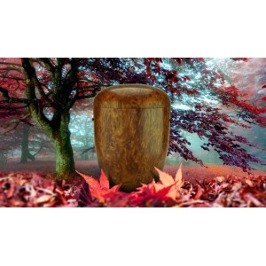 Biodegradable Cremation Ashes Funeral Urn / Casket - NATURAL OAK EFFECT