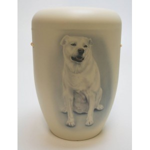 Biodegradable Cremation Ashes Funeral Urn / Casket - PET DOG (LABRADOR RETRIEVER)