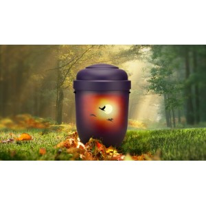 Biodegradable Cremation Ashes Funeral Urn / Casket - SUNSET FLIGHT