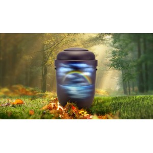 Biodegradable Cremation Ashes Funeral Urn / Casket - RAINBOW