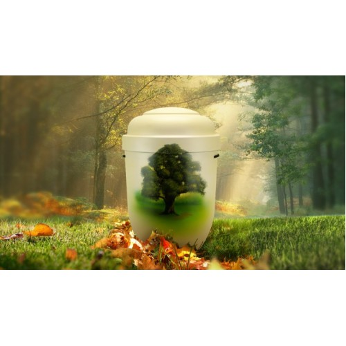 Biodegradable Cremation Ashes Funeral Urn / Casket - TREE OF LIFE