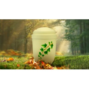 Biodegradable Cremation Ashes Funeral Urn / Casket - IVY