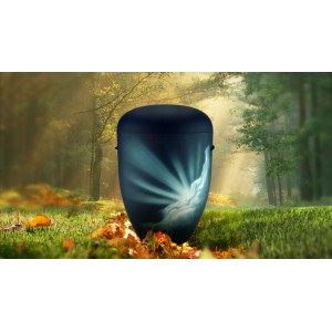 Biodegradable Cremation Ashes Funeral Urn / Casket - GLORIOUS RAYS