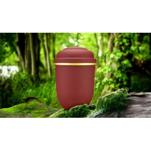 Biodegradable Cremation Ashes Funeral Urn / Casket - RED BEACON
