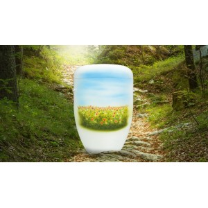 Biodegradable Cremation Ashes Funeral Urn / Casket – WILDFLOWER MEADOW