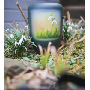 Biodegradable Cremation Ashes Funeral Urn / Casket - SNOWDROPS