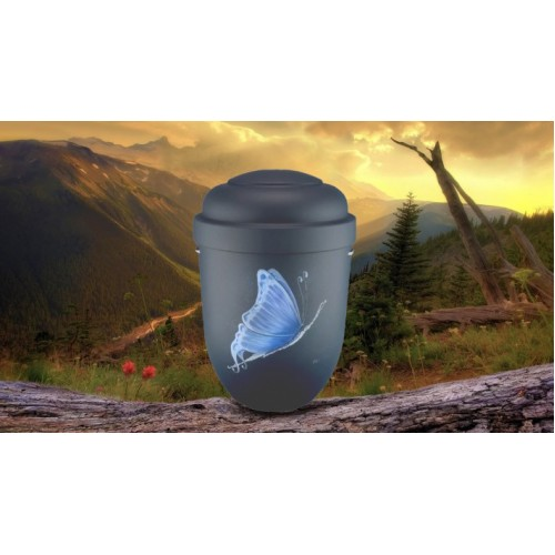 Biodegradable Cremation Ashes Funeral Urn / Casket - BLUE BUTTERFLY