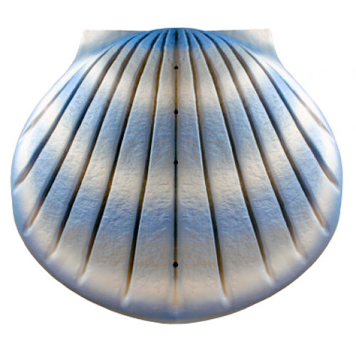 Biodegradable Cremation Ashes Urn - THE SHELL (Aqua Blue)
