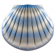 Shell Urn (Aqua Blue)- The Natural Choice
