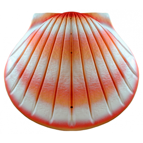 Biodegradable Cremation Ashes Urn - THE SHELL (Coral)