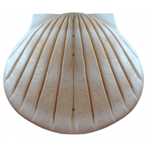 Biodegradable Cremation Ashes Urn - THE SHELL (Pearl)