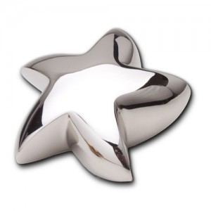 Keepsake Star (Shiny Silver)