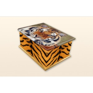 Tiger Eyes (CR726) Call for price