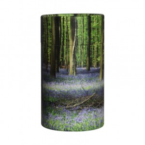 Mini Scatter Tubes – Bluebell Woods