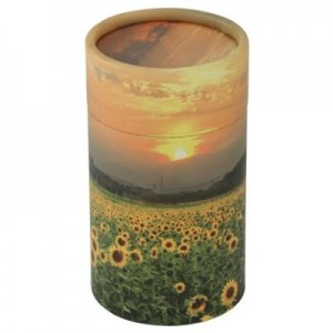 Mini Scatter Tubes – Sunflower