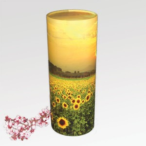 Adult Scatter Tubes - Sunflower