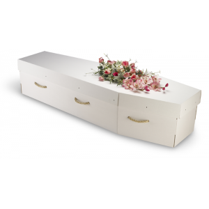 Premium White Cardboard Coffin