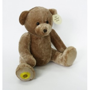 Memory Bear. Help keep precious memories