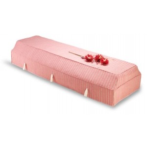 Environ Casket with Pink Fragrant Root Cover - SORRY SOLD OUT