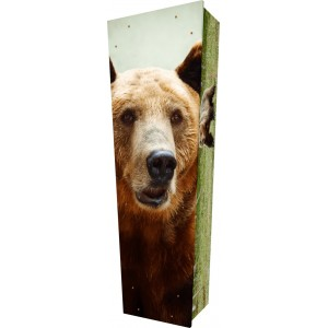 Stay Wild (Bear) - Personalised Picture Coffin with Customised Design.