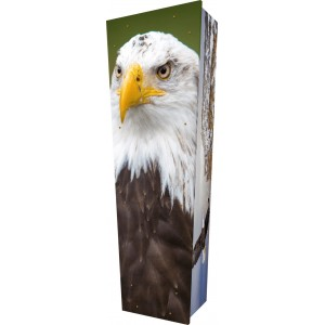 Soaring Eagles - Personalised Picture Coffin with Customised Design.