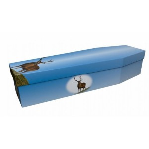 Highland Stag - Animal & Pet Design Picture Coffin