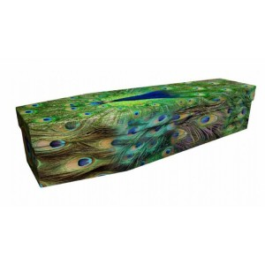 Pretty As A Peacock – Animal & Pet Design Picture Coffin