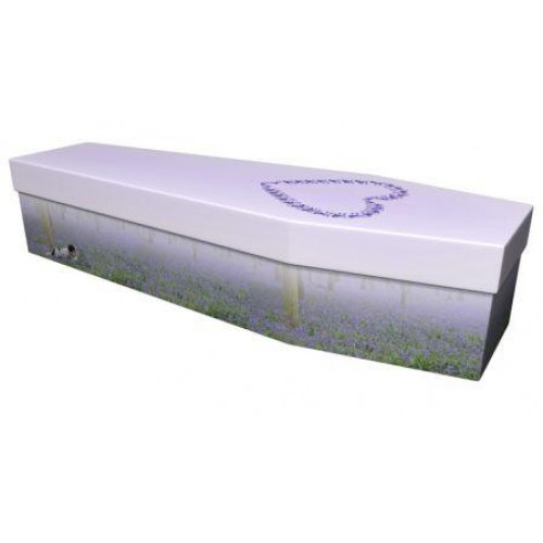 The Bluebell Heart - Premium Cardboard Picture Coffin