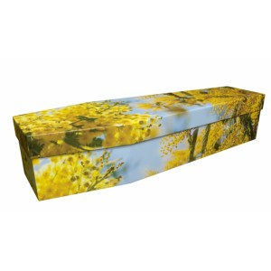 Route du Mimosa - Floral Design Picture Coffin