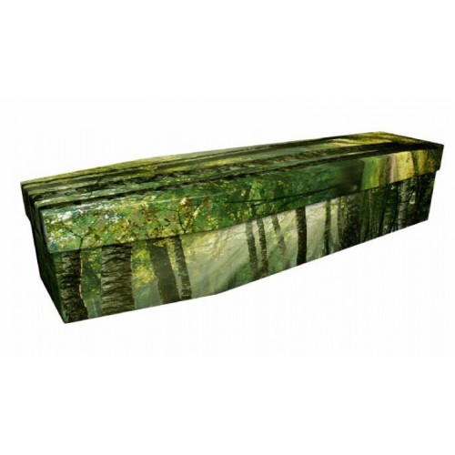The Woods Are Calling - Landscape / Scenic Design Picture Coffin